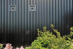 černá fasáda domu