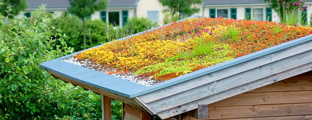 Střešní zahrady na dřevostavbách