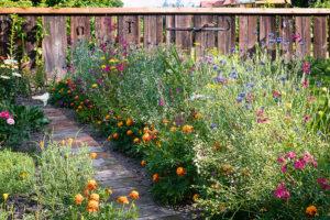prírodní zahrada