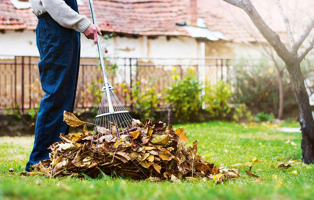 Podzimní úklid v zahradě