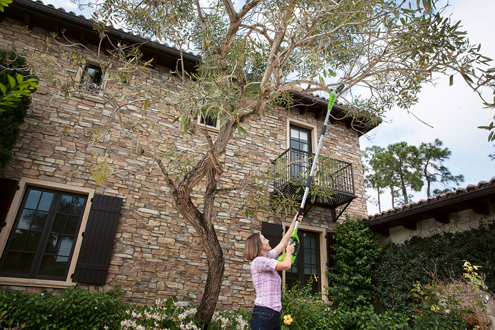 SAKU prořezávačem větví Greenworks G40PS20 pohodlně dosáhnete do koruny stromu amůžete přitom stát oběma nohama pevně na zemi. www.mountfield.cz FOTO Mountfield