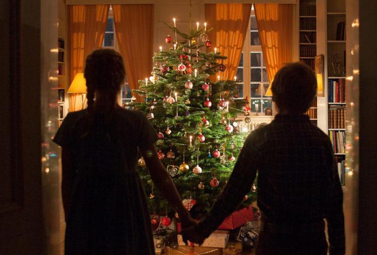 Jak se starat o vánoční stromek