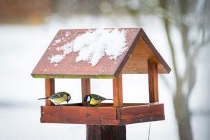 Krmítko pro ptáčky