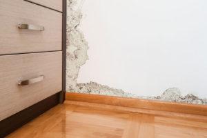 Poškození stěn