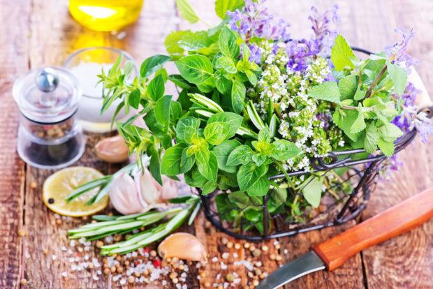 Bylinky a léčivé rostliny, kterými si posílíte imunitu