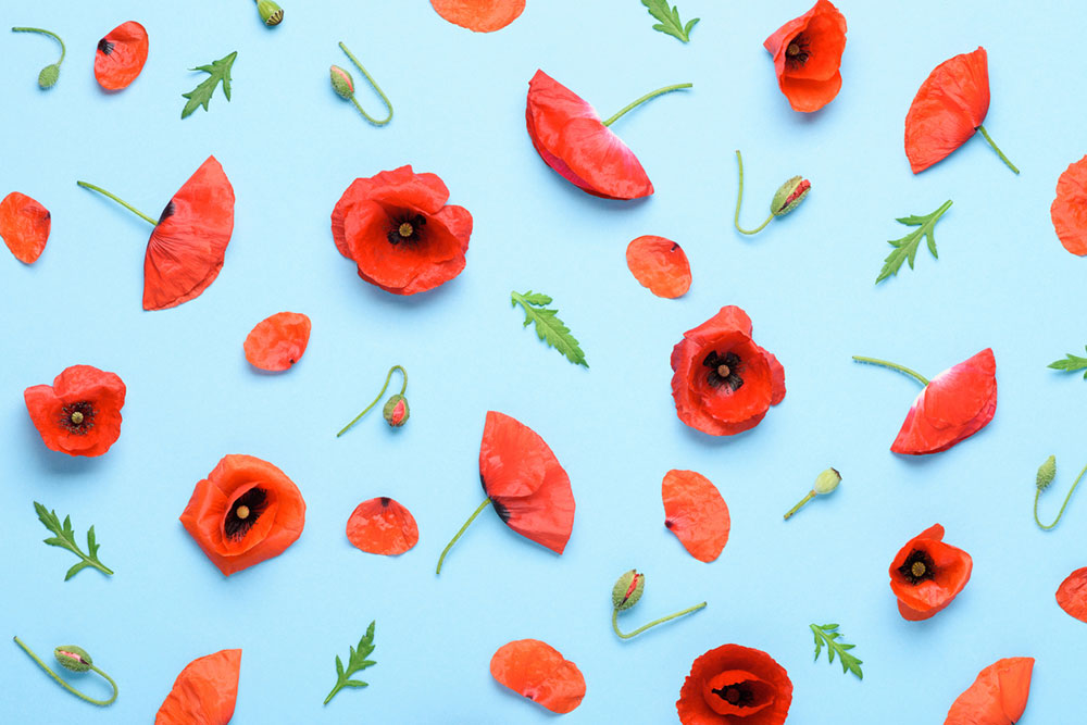 6 způsobů, jak doma podpořit jarními dekoracemi svou pohodu