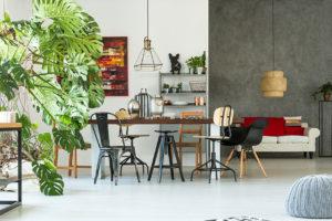 3 oblíbené interiérové rostliny, které vás mohou dostat do nemocnice
