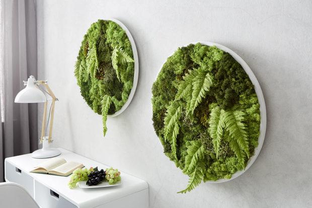 Zelený obraz zmechu