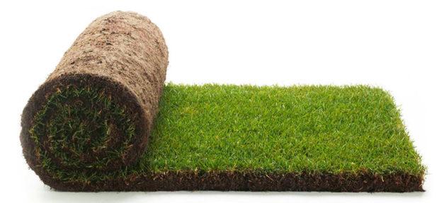 travní koberec
