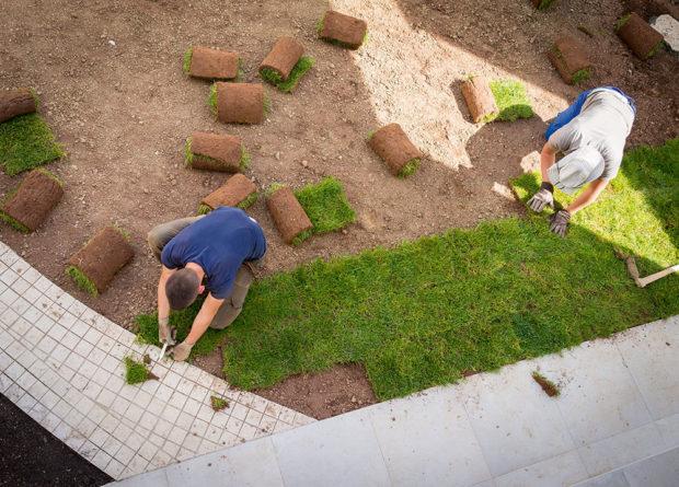 Položení hotového trávníku