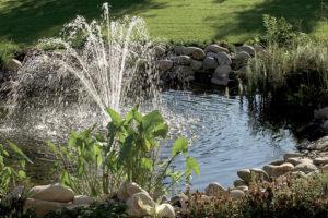 Jak vybrat techniku do zahradního jezírka