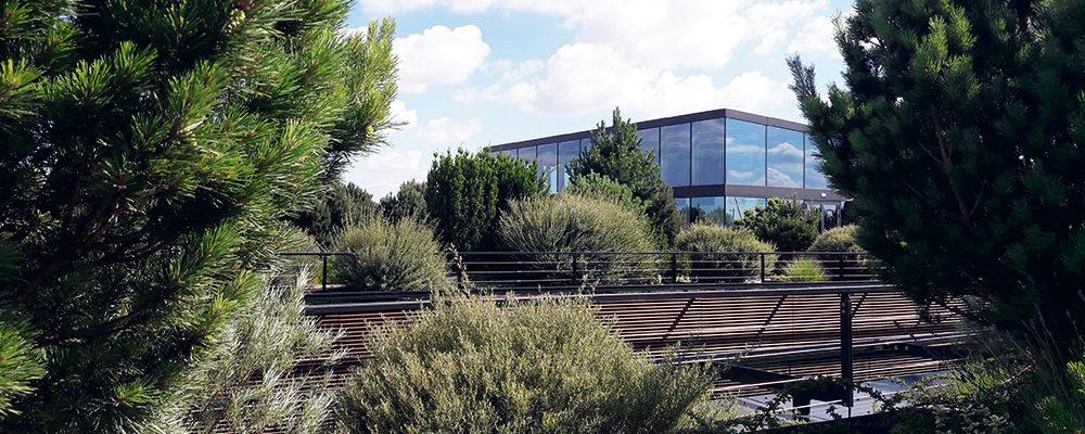 Přinášíme výstupy z kulatého stolu: Vegetační střechy