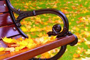 Lavička v parku podzim