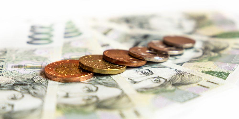 Liška v květnu poskytla více úvěrů i spoření než loni