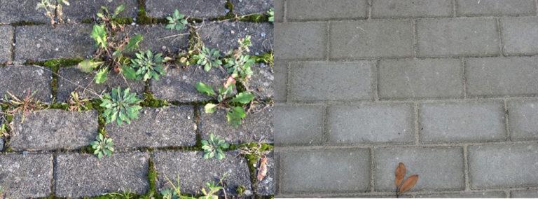 Spárování exteriérových dlažeb bez kompromisů
