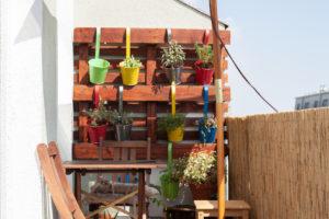 pestovani kvetin na balkone