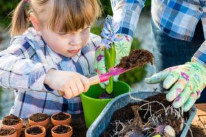 pestovaní kvetin a bylinek