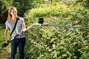 Jak zkrotit dřeviny na zahradě