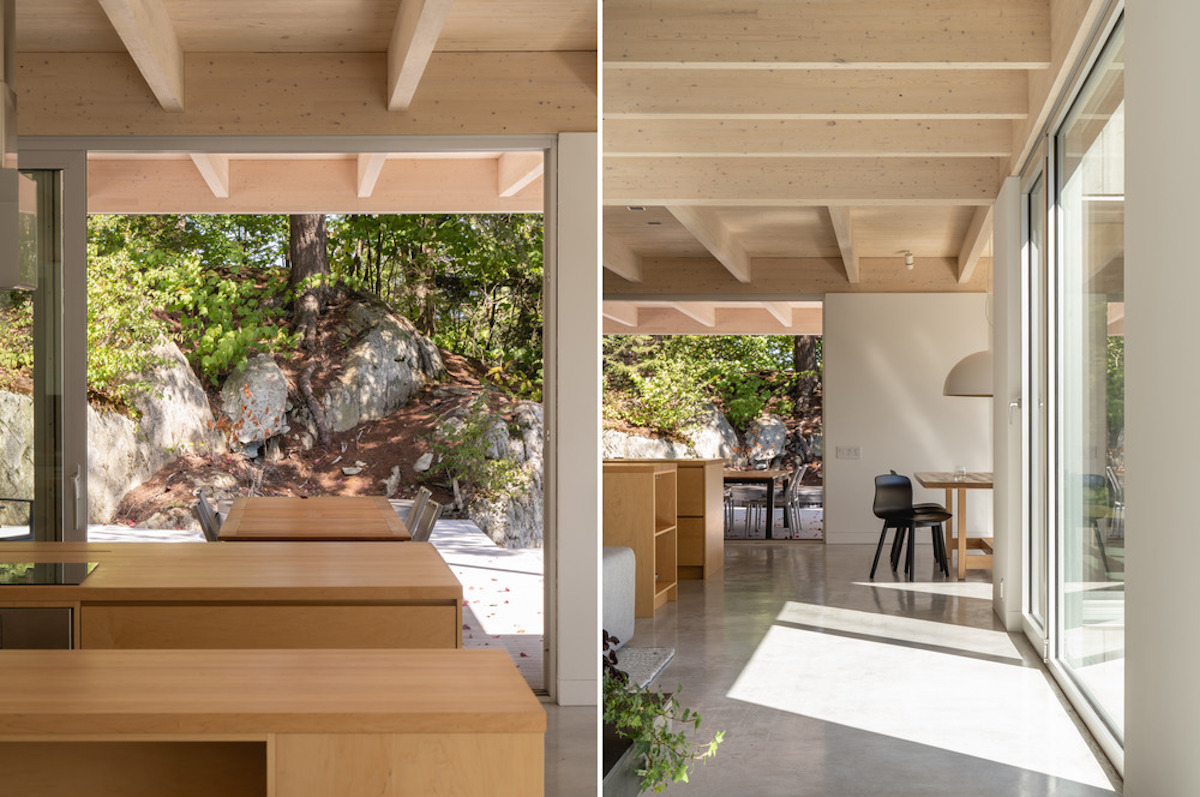 Forest house13