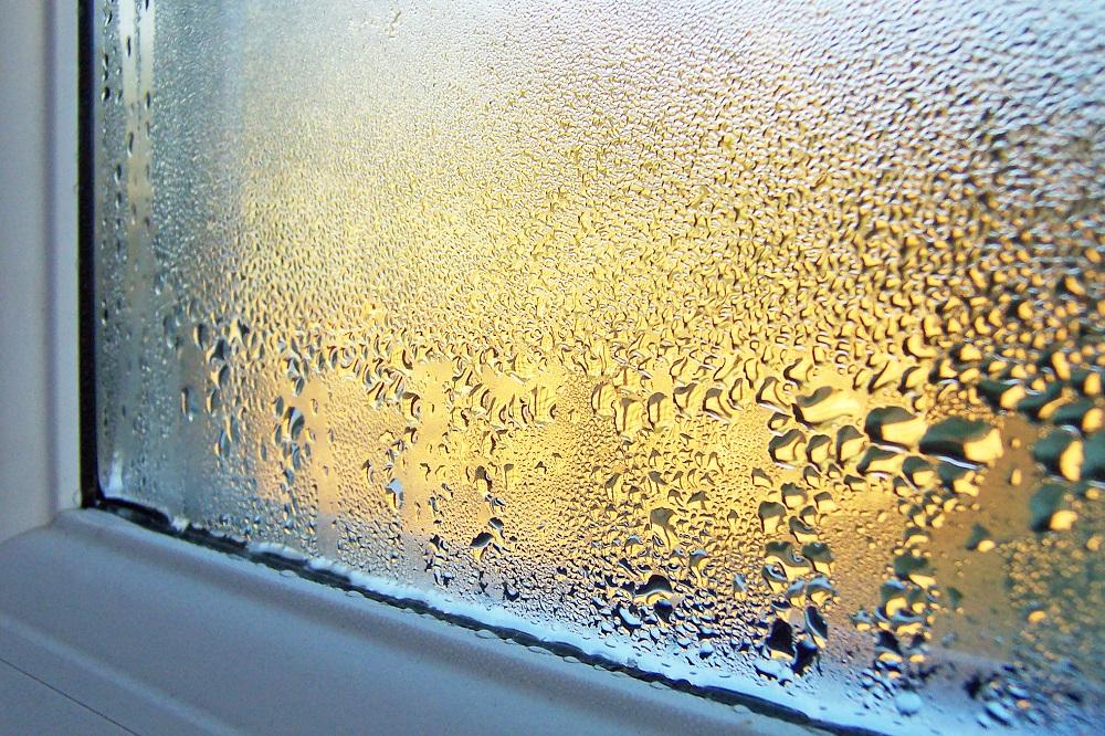 Užitečné triky, jak se zbavíte vlhkosti, kondenzace a plísní