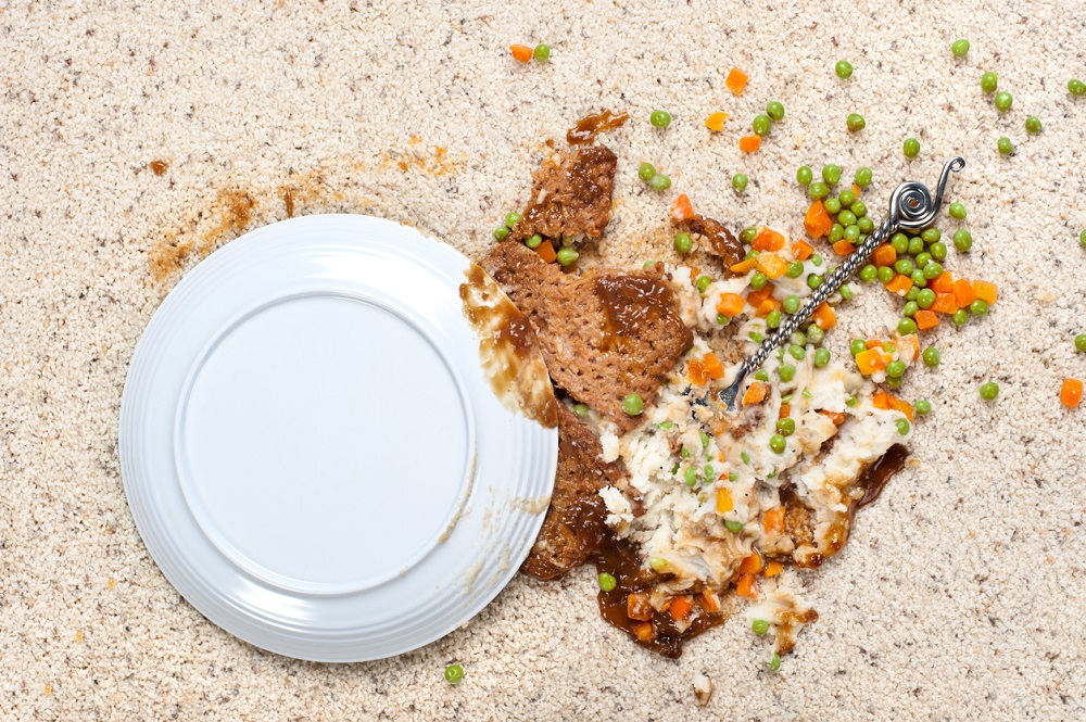 Spilled plate of food on carpet