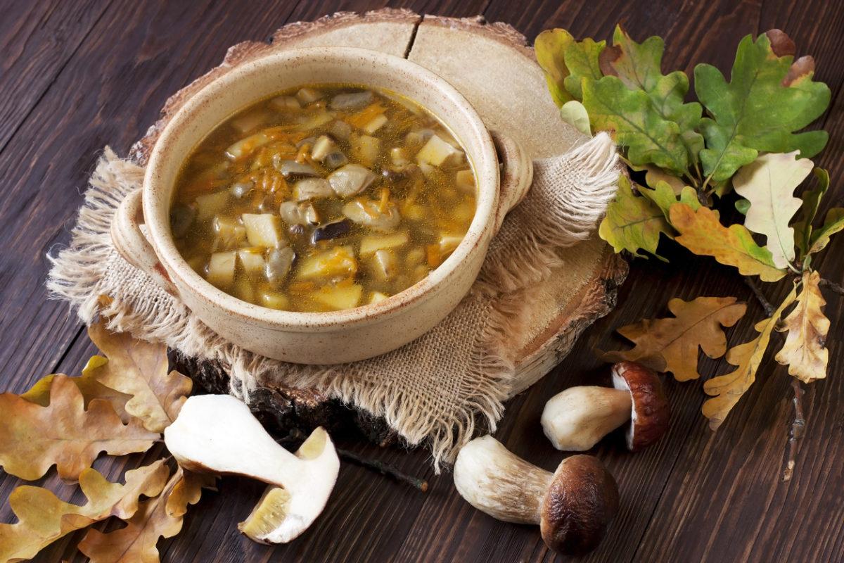 Vegetariánská houbová polévka scibulí