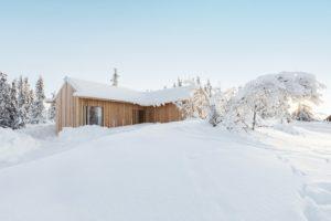 Drevěná chata v lese