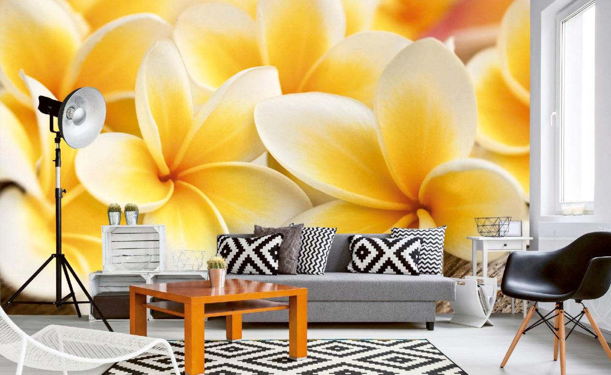 Přivolejte si jaro do svých domovů pomocí fototapet
