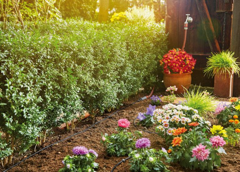 Pusťte se do jarní rekonstrukce zahrady, Hornbach má otevřeno!