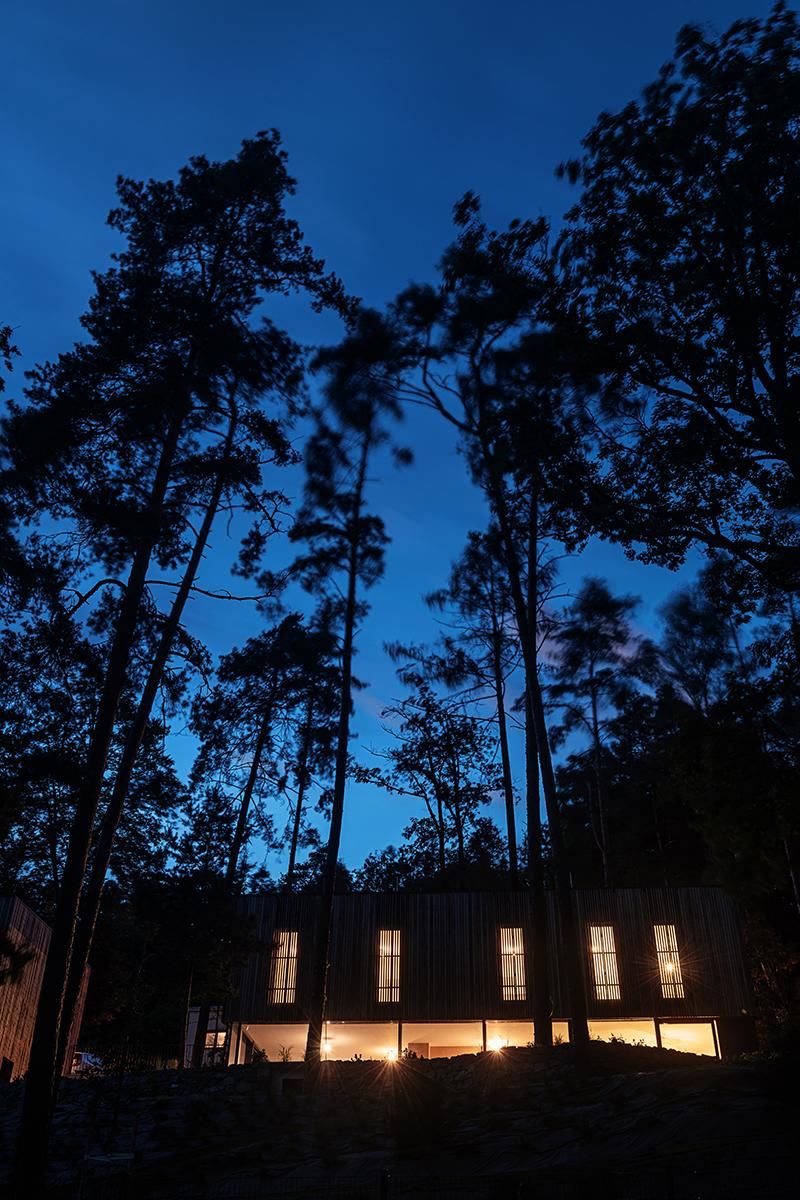 Dum v lese36
