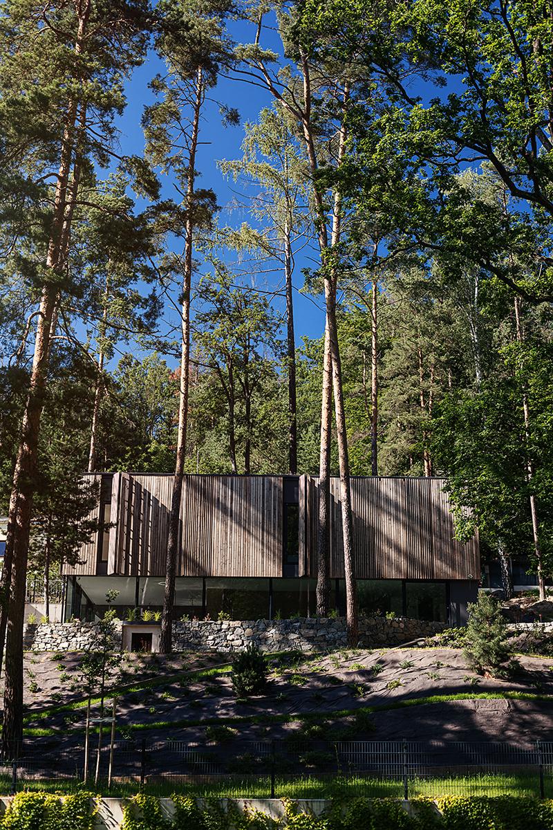 Dum v lese8
