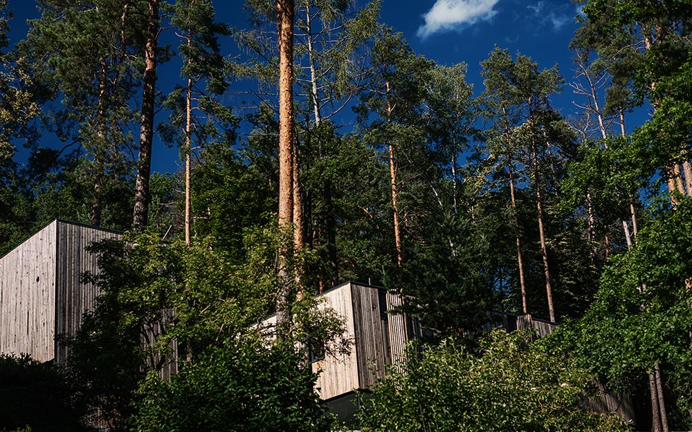 Dum v lese9
