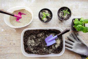 Používání vermikulitu při rostlinách