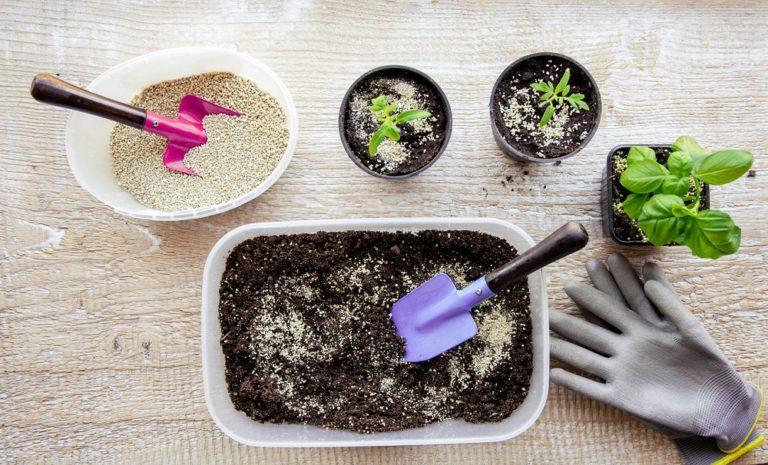 Co je to vermikulit a jak vám může pomoci při pěstování