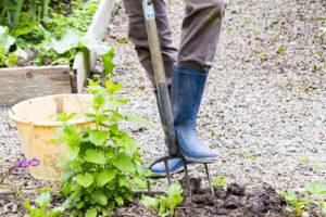 Práce v zahradě