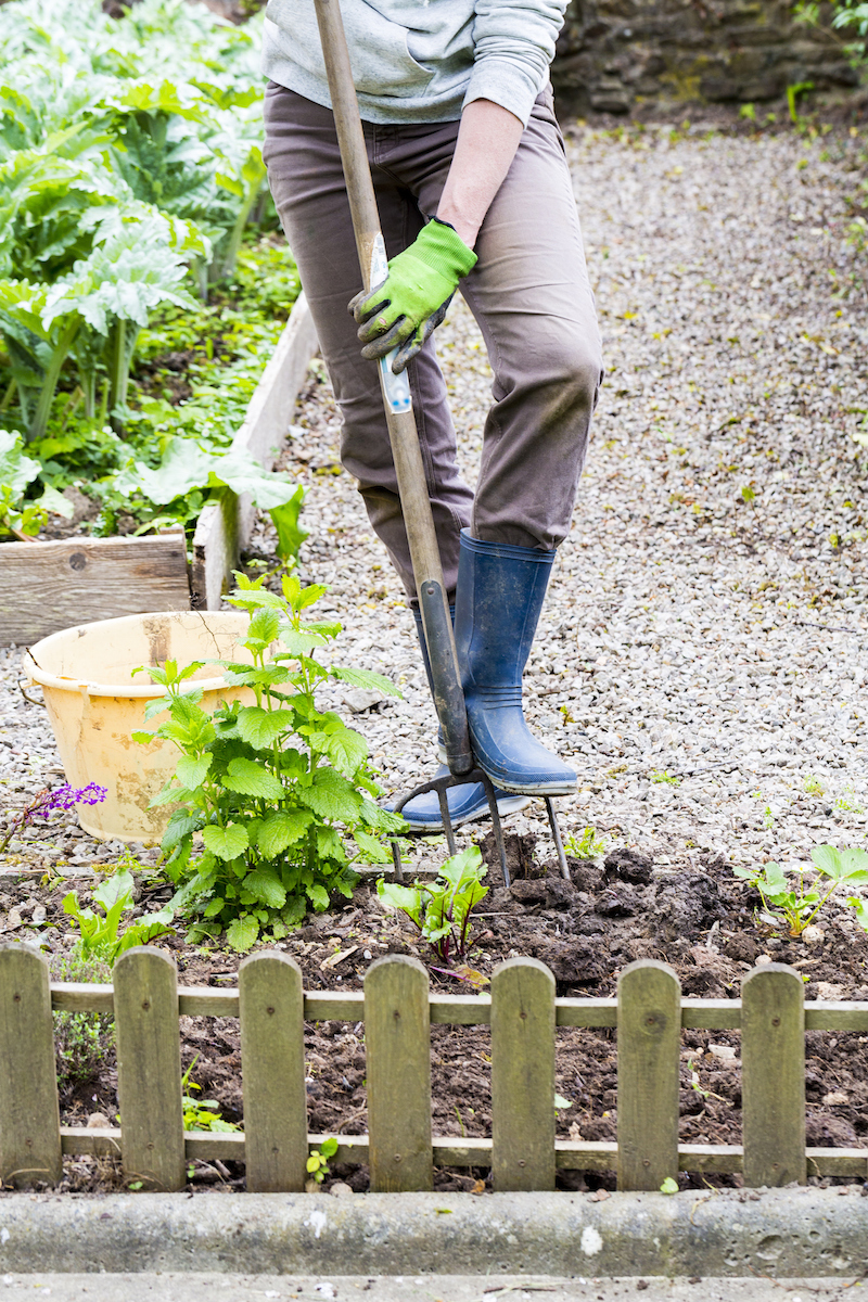 Mature woman hand taking out weeds plants from earth in garden