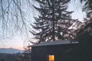 Tmavým dřevem obložený dům