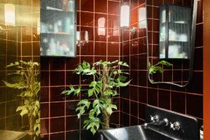 Tmavá koupelna