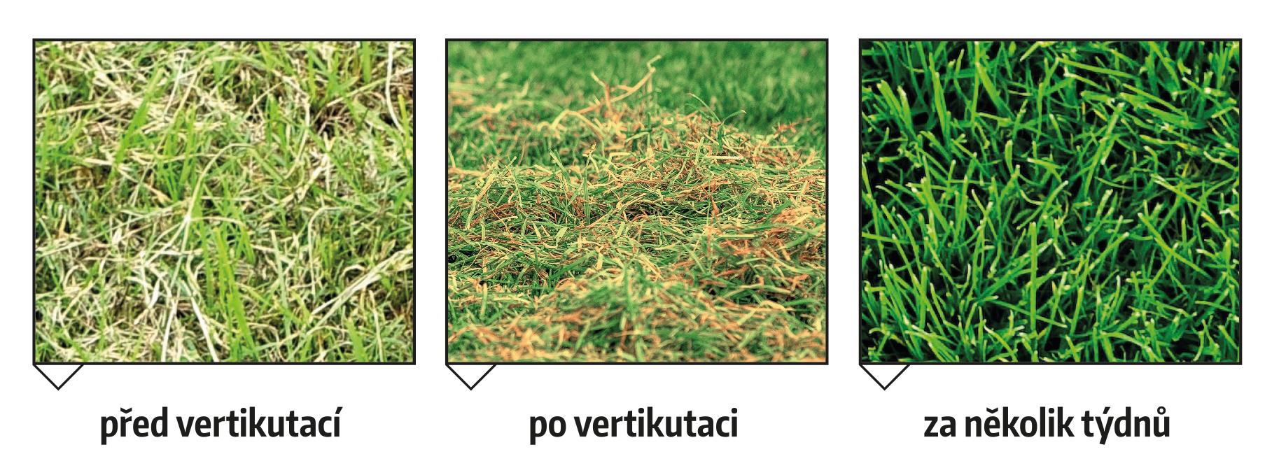 Vertikutace.pdf