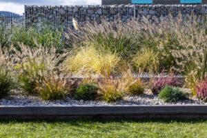 Dekorativní keře a trávy