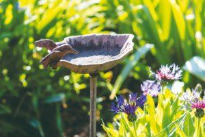 Vodní prvek pro ptactvo