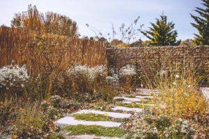 Chodník v zahradě
