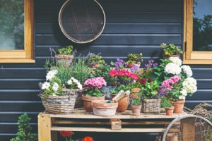 Stolek z aplet plný květin a náčiní