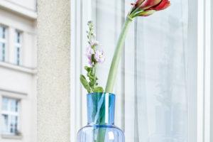 Váza s květinou v okně