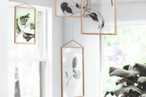 Visící botanické fotografie jako dekorace