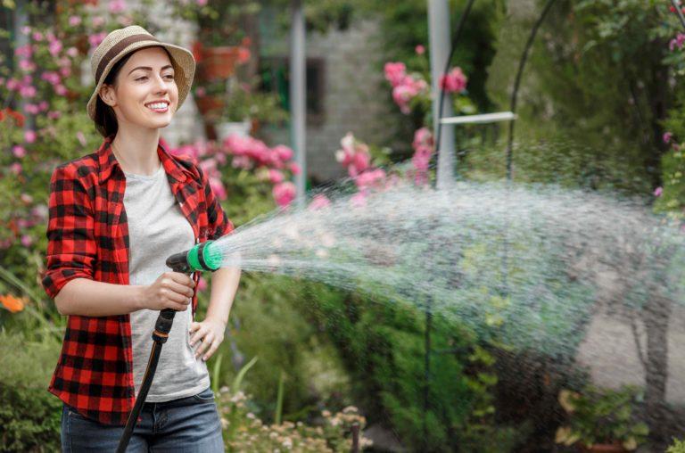 Srpen v zahradě: Tipy a triky pro kvetoucí zahradu a dobrou úrodu