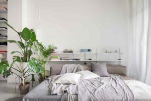 Velká postel s poličkou a rostlinami