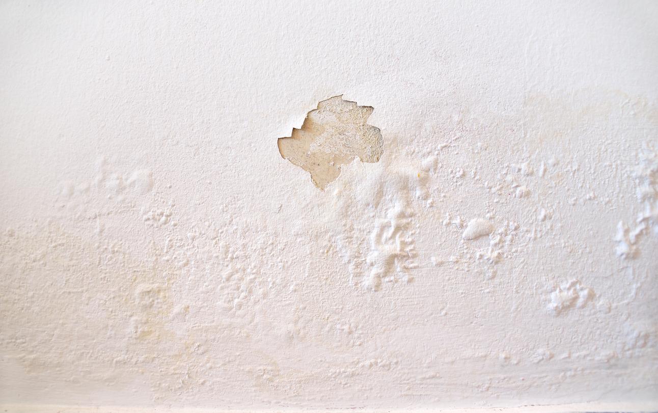 Vlhká stěna opadající