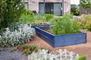 Vyvýšené záhony v zahradě