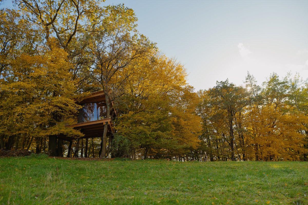Tree house_Jan Hromádko1